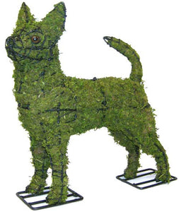 Topiary Dog Chihuahua
