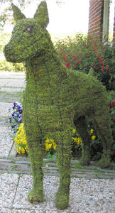Topiary Dog Doberman