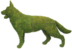Topiary Dog German Shephard standing