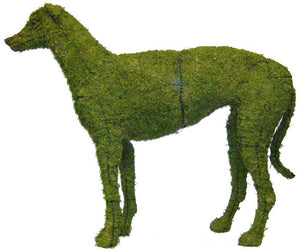 Topiary Dog Greyhound