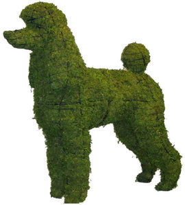 Topiary Dog Poodle