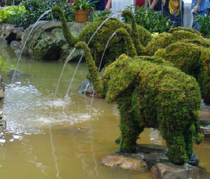 Topiary Elephant with water hose