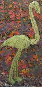 Topiary Flamingo