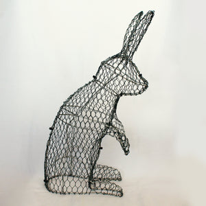 Rabbit Frame /  : Large : 55cm High (exc pot)