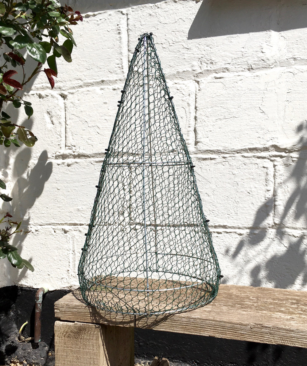 Cone Pyramid Frame Medium 30cm High Top Topiary