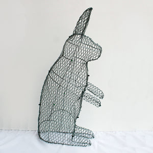 Rabbit Frame /  : Xtra Large : 80cm High (exc pot)