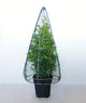 Cone Pyramid Frame Large - 50cm High