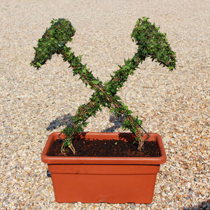 Crossed Hammers Topiary Sculpture