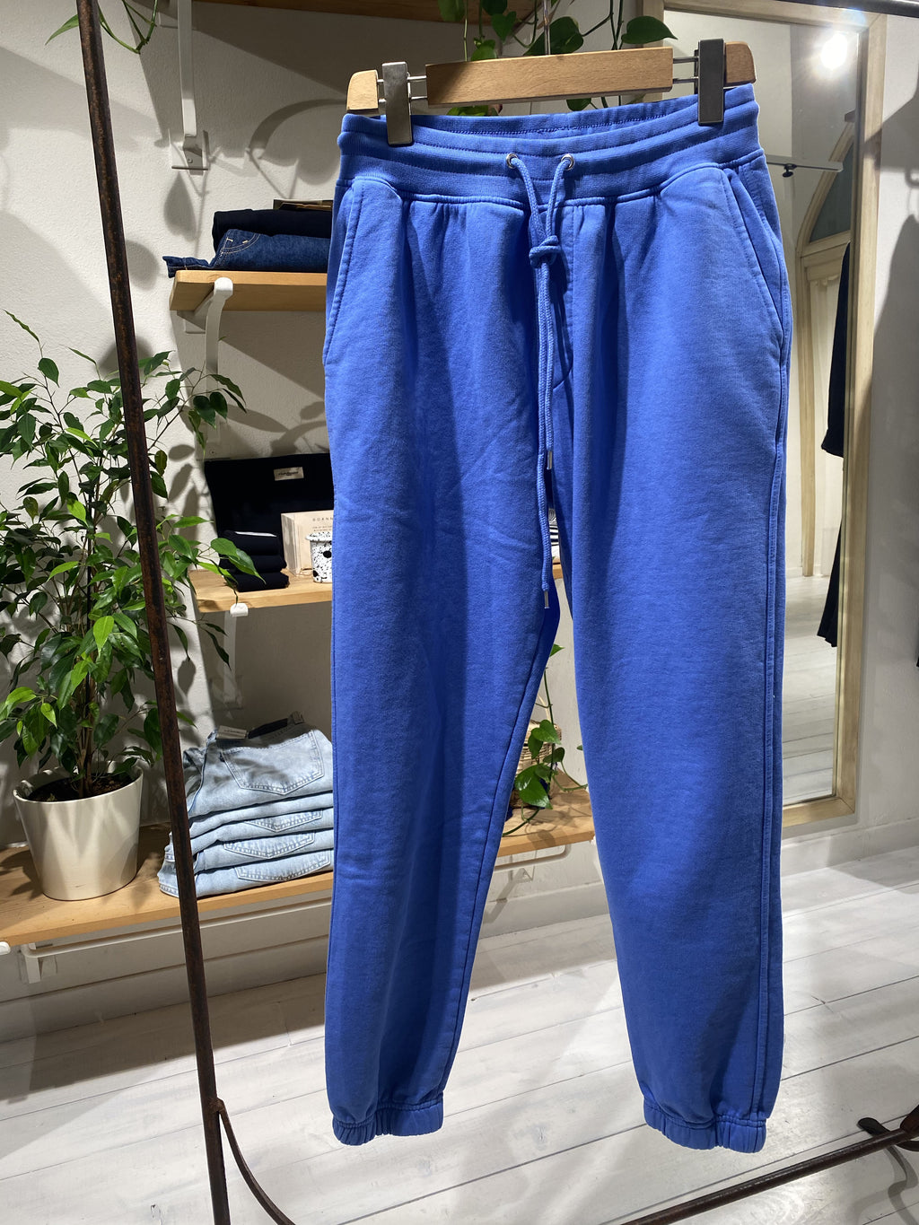 Sweatpants COLORFUL STANDARD - Sky Blue