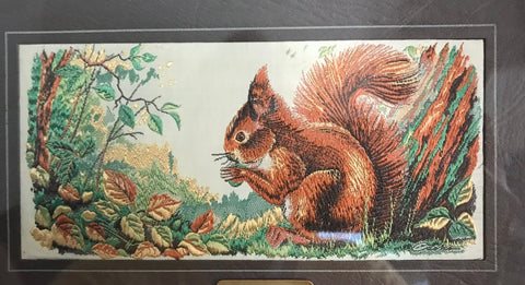 Vintage Red Squirrel Woven in Silk Matted in Wood Gold Frame