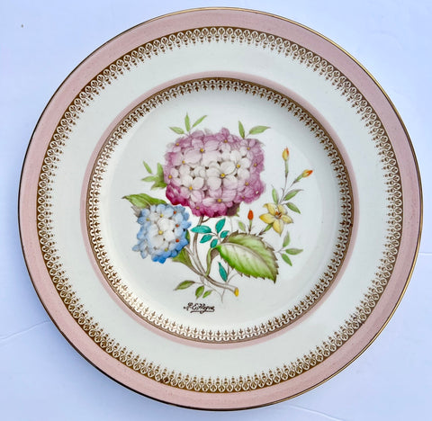 Antique Signed Hand Painted Hydrangeas Botanical Transferware Plate  English Cottage