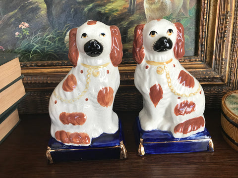 Med Pair White w/ Gold English Staffordshire Spaniel Wally Dog figurines on Cobalt Bases