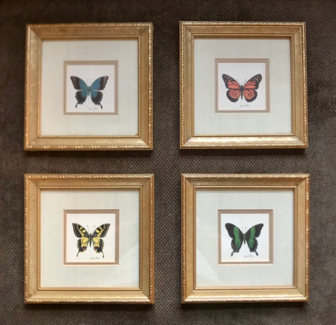 SET OF 4 Vintage Double Matted Gold Framed Butterfly Prints