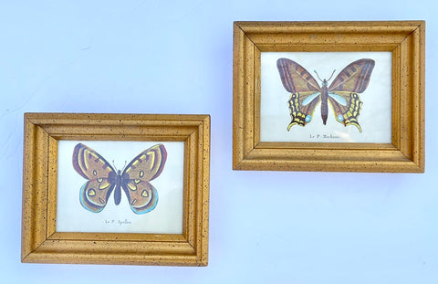 vintage Pair Butterfly Prints In Antiqued' Gold Leaf Frames