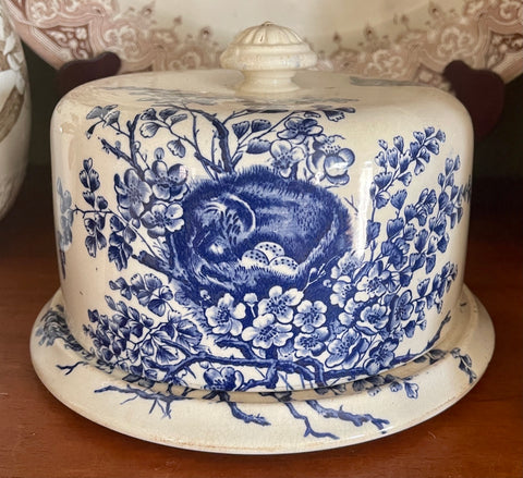 RARE Antique Victorian Staffordshire Cheese Dome & Plate Blue English Transferware Bird & Nest