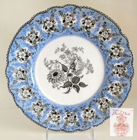 circa 1835 Rare Blue & Black Two Color Transferware Plate Liverpool Herculaneum Rose Floral Sprays