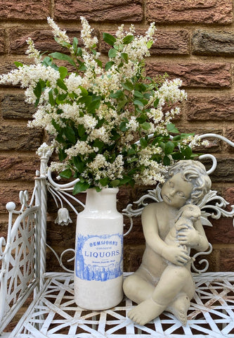 Rare Blue Transferware Demijohn's Choice Liquors English Ironstone Advertising Bottle Vase