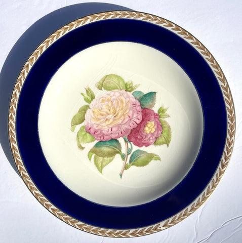 1940 Hand Painted Ivory / Pink Camelia Botanical English Transferware Plate Grand Millennial Decor