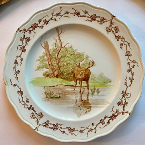 19C Antique Woodland Stag Aesthetic Movement Transferware Plate Brown Westhead Moore