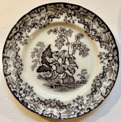 Antique 19thC Staffordshire Black Mulberry Transferware Pearlware Plate Lily