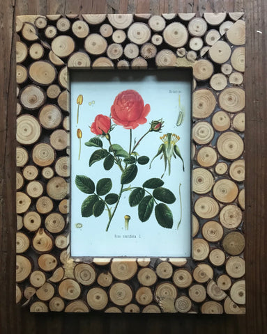 Real Wood Tree Slice Picture Frame w/ Antique Rose Botanical Print