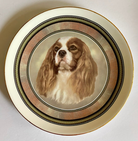 Vintage English Staffordshire Portrait Plate King Charles Spaniel