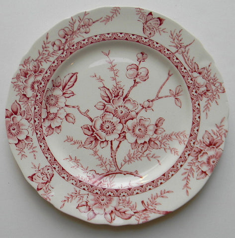 Red Toile English Transferware Plate Butterfly Flowers Berries Blossoms Dinner Size