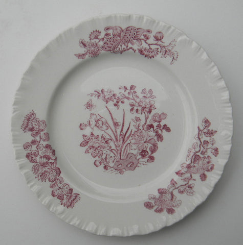 Wedgwood Purple Transferware Plate Nautical Sea Shells & Botanicals