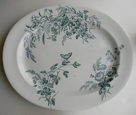 Huge Antique Aesthetic Movement Staffordshire Serving Platter Teal Transferware Cauldon England  Brown Westhead Moore Butterfly Daisies Wildflowers
