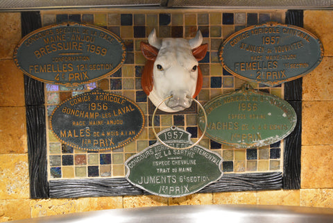 Vintage French Country Cattle Cow Award Plaque 1957 Farming History Cantonal