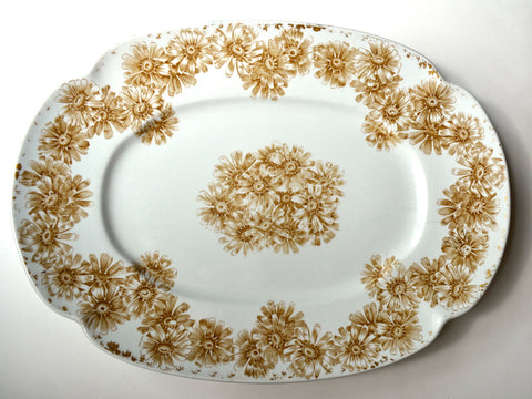 Rare Antique Royal Worcester Golden Taupe Ironstone Platter Wild Daisies Ovington Brothers New York