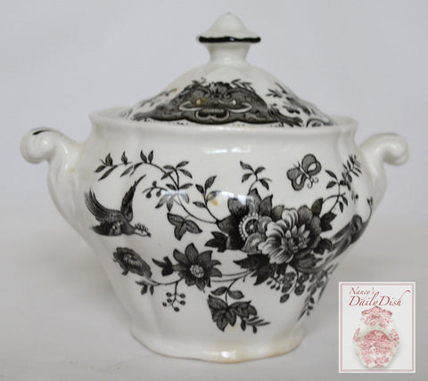 Vintage Black English Transferware Toile Sugar Bowl Roses Birds Windsor Asiatic Pheasants