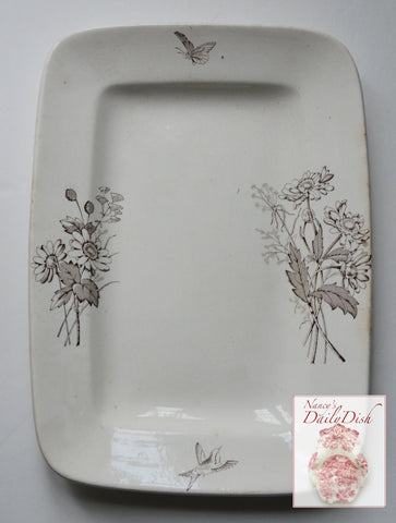 Birds Butterflies & Daisy Flowers Aesthetic Movement Ironstone Platter Brown Transferware  Staffordshire  Circa 1883