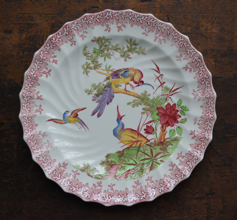 1927 Spode Copeland Chinoiserie Red Transferware Earthenware Painted Peacock Pheasants Oriental Chelsea Bird Plate