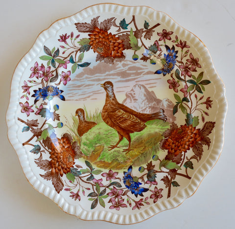 VINTAGE Spode Copeland Brown Polychrome Transferware Plate Game Bird Blackcock Aster Handpainted in Vivid Detail