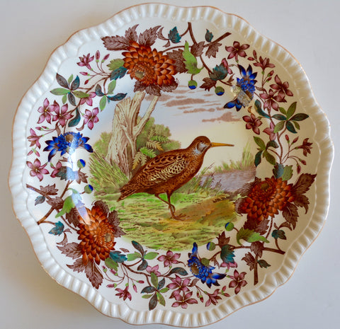 Stunning VINTAGE Spode Copeland Brown Polychrome Transferware Plate Game Bird Woodcock Handpainted in Vivid Detail