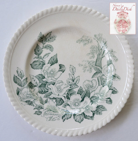 "Vintage England Teal Green & White Transferware 10"" Plate Apple Flower Dogwood Blossoms"