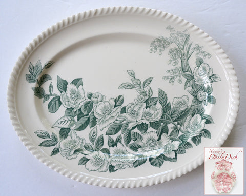 Vintage Teal Green & White China English Transferware Platter Apple Flower Blossoms