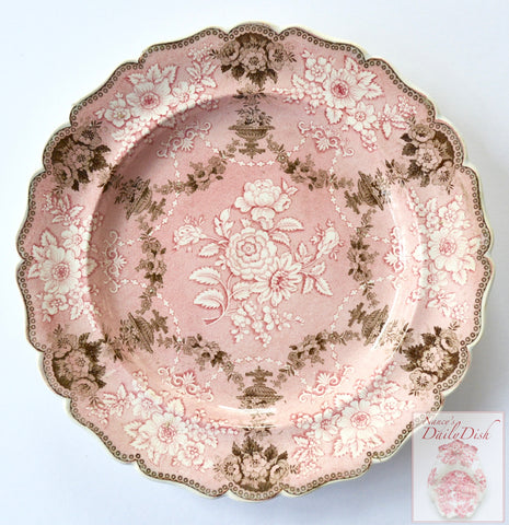 1835 Rare Pink Brown Two Color Transferware Plate Etruscan Festoon Ridgway