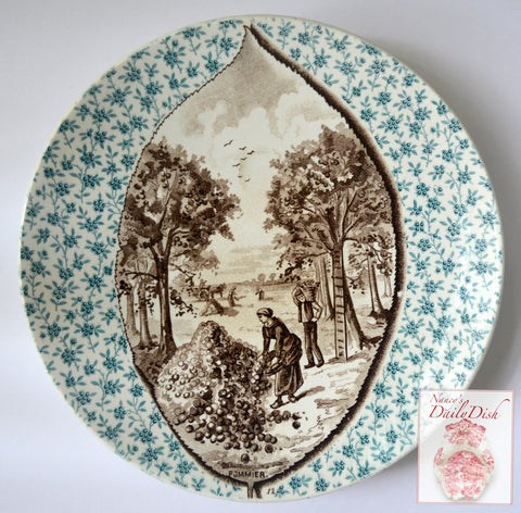 Antique French Bi Color Teal Blue & Brown Transferware Plate Leaf Inset Apple Picking  POMMIER