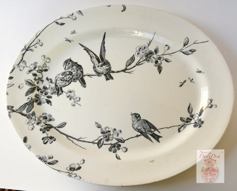 "16"" Antique English Victorian Song Birds & Apple Blossoms Black Transferware Platter Aesthetic Movement P B & S"