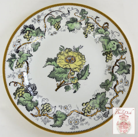 Black Transferware Hand Enameled Lustre Ware Plate Antique Wedgwood Vine Flowers