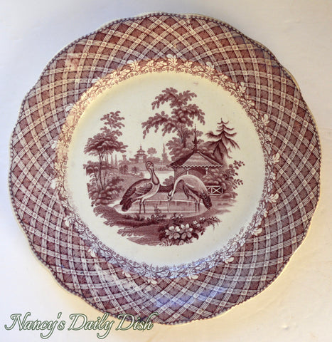 Robinson Wood & Brownfield Purple Zoological Series Antique English Transferware Plate