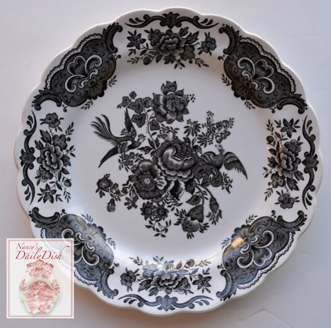 Ridgway Black Toile English Transferware Plate Roses Birds Windsor Asiatic Pheasants 8""