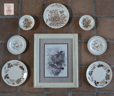 Nature Lovers Instant Wall Decor!  Framed Birds & Nest Print w/ 7 Mix n Match Brown Transferware Bird & Botanical Plates