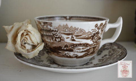 Scenic Swans and Roses Brown Transferware Cup and Saucer Tonquin