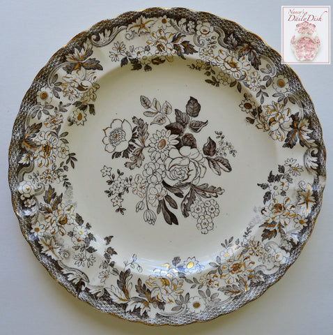 Antique Dark Brown Transferware Victorian Roses Phlox Daisies Plate W T Copeland Spode w/ Gold Accents