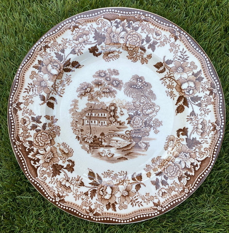 "Swans & Roses Brown Transferware Plate Tonquin 10""  Royal Staffordshire"