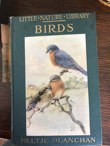Vintage 1934 Coffee Table Book of Birds w/ Color & B/W Plates Little Nature Library