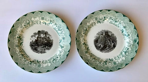 PAIR of Bi Color Transferware Plate Villeroy & Boch Pastoral Floral Green Black